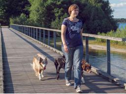 Webinar: Hunde wirksam führen: Teil 2 - 4 (Termine vormittags)