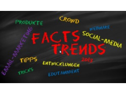 Webinar: 2. Facts & Trends am 28.02.2013