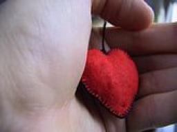 """Webinar: """"Gesund ohne Medizin 4"""" Herzintelligenzübung"""