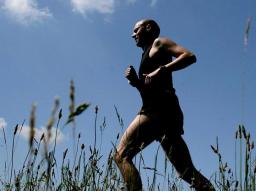 Webinar: Dein Körper & Deine Gesundheit