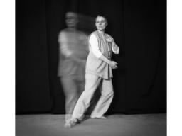 Webinar: Tai-Chi-GODO Teil 9