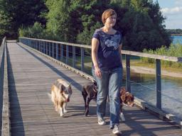 Webinar: Hunde wirksam führen: Teil 2 - 5