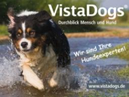 Webinar: Einzelberatung für Hundehalter deren Hund ein Problemverhalten zeigt