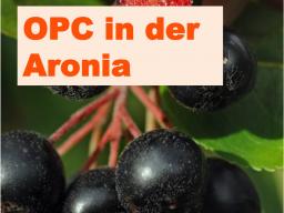 Webinar: OPC in der Aronia - Stärkstes Antioxidanz aus der Natur