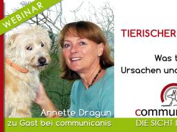 Webinar: Tierischer Juckreiz | Referentin Annette Dragun