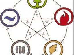 Webinar: Einführung in die Traditionelle Chinesische Tiermedizin (TCVM) - Block 5