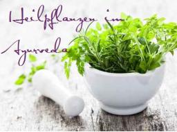 Webinar: Heilpflanzen im Ayurveda - von Panchakarma und Rasayana
