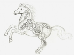 Webinar: Die Muskulatur des Pferdes - Wissenswertes für den Pferdebesitzer