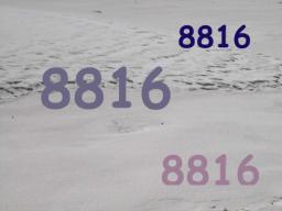 Webinar: 8816 - Unendlichkeit verdoppelt