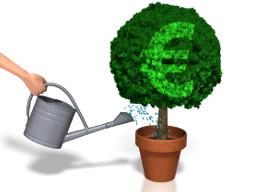 Webinar: Geld verdienen im Internet! Anfänger-Webinar