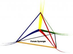 Webinar: Synergie-Vortrag  5 / 5 (Herzensintelligenz)