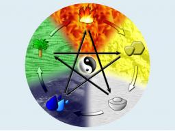 Webinar: Calli & Co - Effektives Reinigen und Nähren der Körperzellen