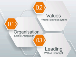 Webinar: SAOS, dass moderne Organisations-System (Alternative zu Hierarchie und Matrix)
