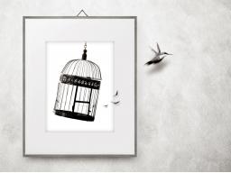 Webinar: Frei sein!