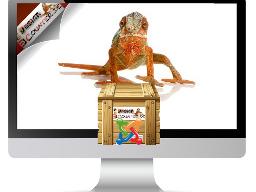 Webinar: Business Webseite mit E-Mail Marketing