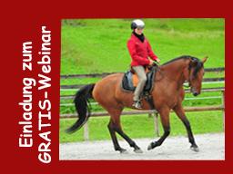 Webinar: GRATIS: Die gesundheitsfördernde, gymnastisch wertvolle Pferdeausbildung! Teil 2/2