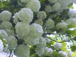 Webinar: Fit in den Frühling