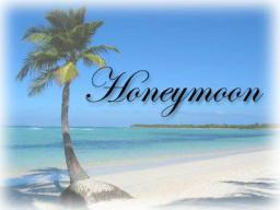 """Webinar: Vortrag """"Der Honeymoon-Effekt"""" - Liebe geht durch die Zellen"""