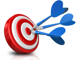 Webinar: VIP Online-Coaching