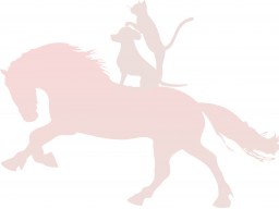 Webinar: Überblick der wichtigsten Pferdeerkrankungen