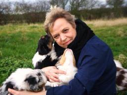Webinar: Ist mein Hund wirklich Leinenaggresiv?