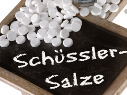 Webinar: Schüßler Salze bei Haustieren anwenden Teil 3