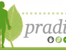 Webinar: PRADIX - Einführung in die Funktionsweise der Online-Plattform