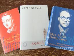 Webinar: Homo faber, Agnes, Dantons Tod ➪ ABITUR-Vorbereitung