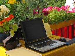 Webinar: Wie du mitreißende Webinare gestaltest