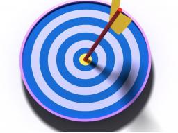Webinar: Ziele 2015