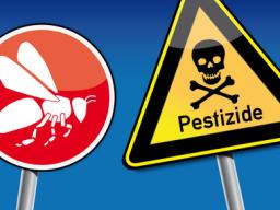 Webinar: Die tödlichen Gefahren für unsere Gesundheit
