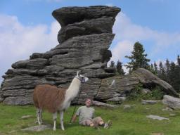 Webinar: Lama-Trekking am Alpl