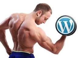 Webinar: Powermarketing mit WordPress - Geheime Insiderstrategien - Für Gäste von Torsten Jaeger