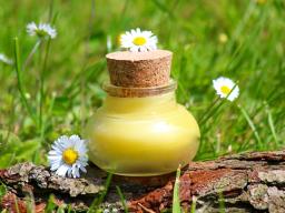 Webinar: Säfte, Salben und Tinkturen ....Die Grundlagen der Pflanzenverarbeitung