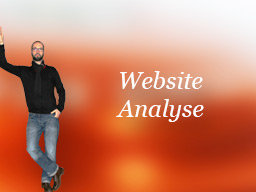 Webinar: Website-Analyse