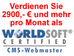 Webinar: Erfolgreich als Webmaster