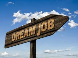 Webinar: Dein persönliches Karriere-Coaching (Einzel-Coaching)