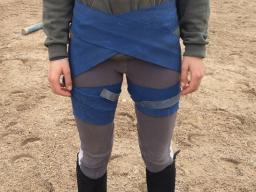 Webinar: Tellington Körperbänder für Reiter
