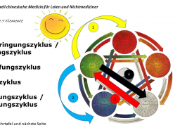 Webinar: TCM Teil 6 von 6: empfindliches Gleichgewicht