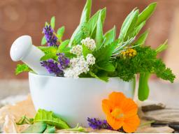 Webinar: der basische Frühjahrsputz