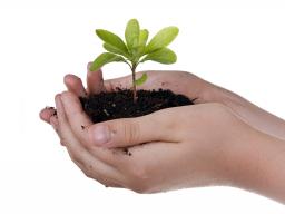 Webinar: Modul 3: Wachstum und Balance mit Engpassbeseitigung