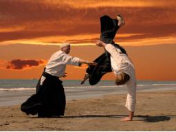 Webinar: Verbales Aikido - Die gewaltfreie  Dialogkunst