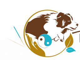Webinar: Block 5 - Osteopunktur für Hunde