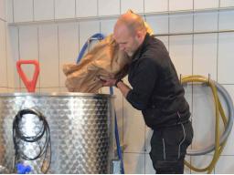 Webinar: Bier brauen - Wie der erste Brauversuch gelingt