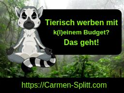 Webinar: 30 Wege: ohne/ mit kleinstem Budget werben, effektiv und nachhaltig