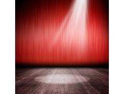 """Webinar: """"Ihr Auftritt bitte  5 praktische Tipps, wie Sie als Therapeut mit Ihrer Stimme Patienten für sich gewinnen"""""""