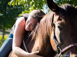 Webinar: Emotional Touch - Pferde(seelen)flüstern