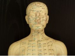 Webinar: The concept of Shen in Chinese medicine psychology