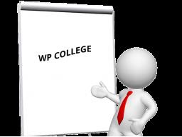 Webinar: Top 10 der allerwichtigsten To Dos nach der WordPress Installation