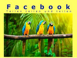 Webinar: Facebook: Teilen ist nicht gleich teilen!